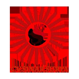 Sinar Surya